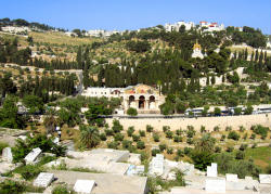 Mt of Olives Holy Land